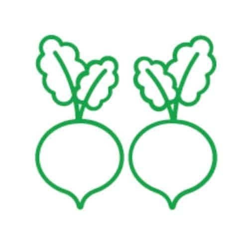 icon for vegetables